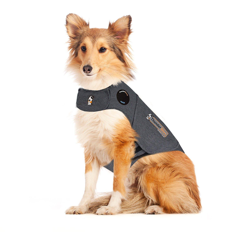 Собачий жилет от Thundershirt