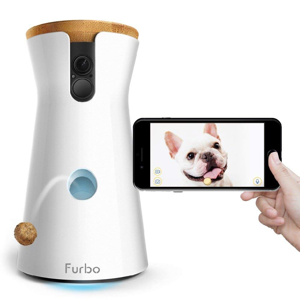 камера furbo dog