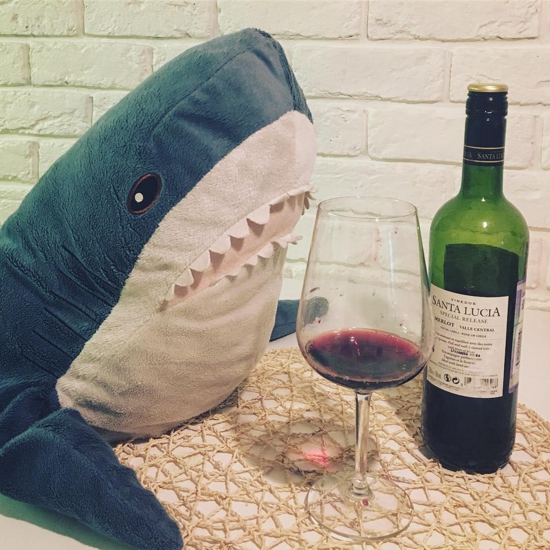 акула алкоголик